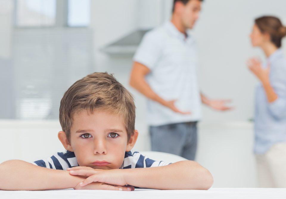 Юрист - лишение и ограничение родительских прав Барнаул